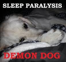 Sleep Paralysis Meme - non 24 sleep disorder medication 6 year old boy suddenly wetting