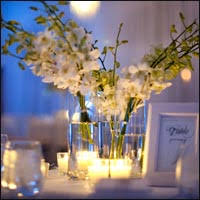 affordable weddings affordable wedding venues in new visitnewengland