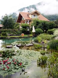 natural swimming pools luxury pools