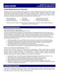 executive resumes sample resume for technology 1000 marketing