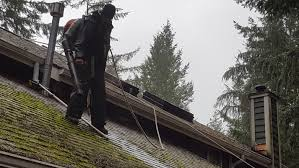 moss removal gig harbor