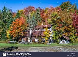 sugar shack maple tree forest fall foliage color