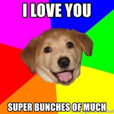 Much Dog Meme - i love you super bunches of much advice dog meme generator