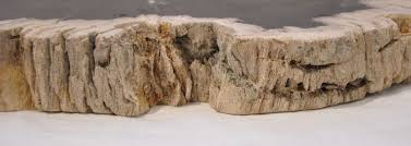 Petrified Wood Bench Petrified Wood Furniture High Quality Petrified Wood Collection