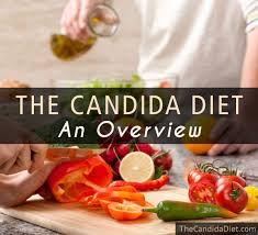 the candida diet an overview the candida diet