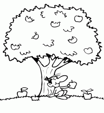 apple tree coloring pages miscellaneous coloring pages coloring pages part 22
