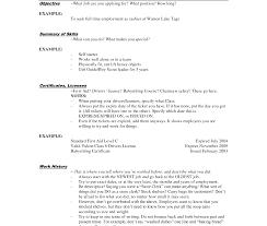 description of job duties for cashier restaurant cashier resume jobscription for head supermarket publix