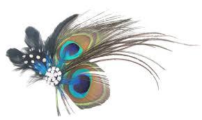 peacock halloween costumes for kids amazon com tobatoba cute peacock feather hair clip hair