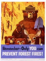 Wildfire Near Markleeville Ca by Smokey Bear Poster 24 X 36 Inch Only You Vintage Camping
