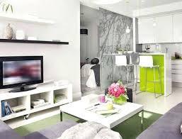 Small Bachelor Apartment Ideas Bachelor Apartment Ideas Design Fantastic Small Bachelor Apartment