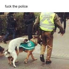 Fuck The Police Meme - dopl3r com memes fuck the police
