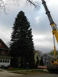muskegon is home to america u0027s tallest singing christmas tree