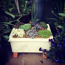 Garden Sink Ideas Mini Belfast Sink Alpine Garden Garden Ideas Pinterest