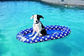amazon com swimways spring float paddle paws dog pool float toys