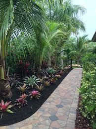 native plant nursery fort myers residential landscape upgrades design u0026 installation seabreeze