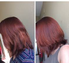 esalon hair color reviews with pictures not your daughter s makeup blog esalon pearl mahogany review