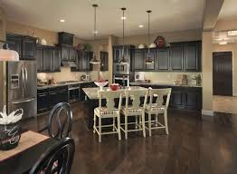 Cabinets Sacramento 40 Best Solstice By Meritage Homes Images On Pinterest Gold