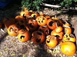 file cucurbita pepo halloween pumpkin jack o u0027 lantern graveyard