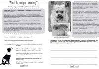 year 6 reading comprehension worksheets ondy spreadsheet