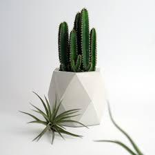 vasi decorativi vasi moderni da interno vasi in cemento ore medium livingdeco