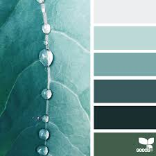 design seeds color palettes inspired by nature design seeds