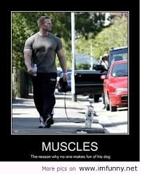 funny people with muscles