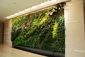 Vertical Wall Garden Plants by Garden How Refreshing With Vertical Garden In Our Ecofriendly