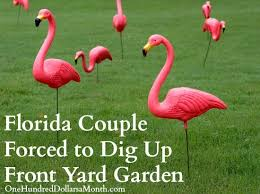 florida forced to dig up front yard garden or fines