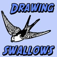 draw birds swallows easy step step drawing lesson