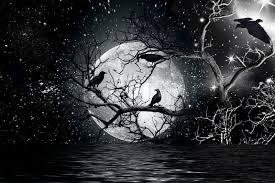 ravens sitting on a tree shined with the moon stock photo