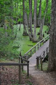 Mississippi cheap places to travel images 21 most beautiful places to visit in mississippi page 4 of 20 jpg