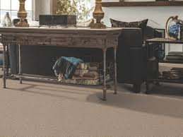 Shaw Carpet Area Rugs by How To Clean Carpet Shaw Floors