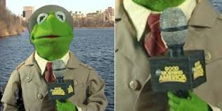 Kermit The Frog Meme - the daily what kermit the frog daily trending internet culture