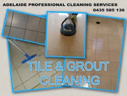 Adelaide Upholstery Cleaning Priceless Carpet Upholstery Tiles U0026 Grout Cleaning Services