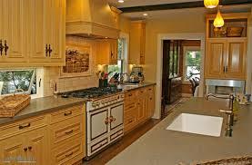 Corridor Kitchen Designs Ambelish 9 Corridor Kitchen Design Ideas On Corridor Or Galley