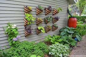 how to make a living wall garden out of cone planters youtube