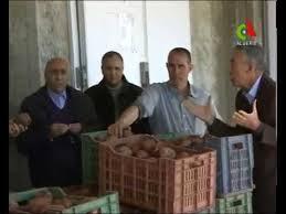 chambre d agriculture ain marché de la pomme de terre à ain defla le 09 avril 2014