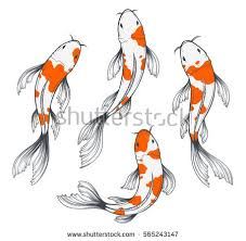 set four traditional japanese koi fishes stock vector 565243147