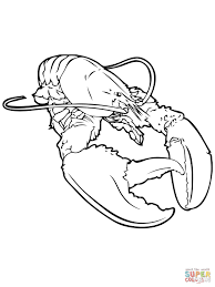 realistic lobster coloring page free printable coloring pages