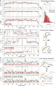 phosphorylation of the fus low u2010complexity domain disrupts phase