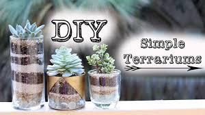 diy simple succulent terrariums u0026 gold jars