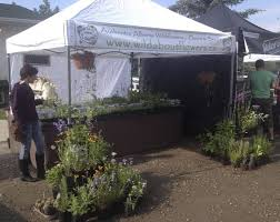 native plants alberta in pictures plant propagator gathers seeds from the wilds of