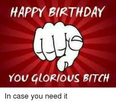 Happy Birthday Bitch Meme - happy birthday you glorious bitch in case you need it birthday
