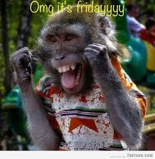 Its Friday Meme Funny - its friday funny images pictures photos pics videos and jokes