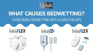 bed wetting solutions what causes bedwetting