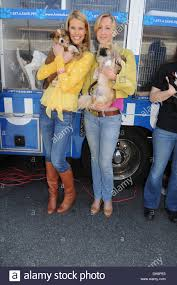 beth ostrosky stern and lara spencer rth shore animal league u0027s