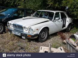 jaguar cars scrap jaguar cars resting in a breakers yard stock photo royalty