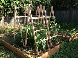 wooden tomato cages homemade tomato cages marshall u0027s weblog