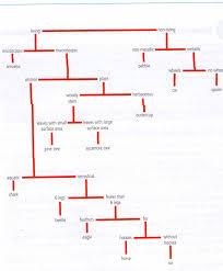 trophic levels yesitsyomoma u0027s blog
