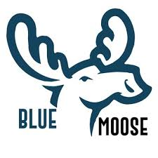 blue moose wedding band bluemoose on in you didn t we were announced